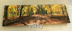 Peter Lik Central Park 1,5 Mètre De New York Nyc Limited Edition # 'd / 950 Avec Coa